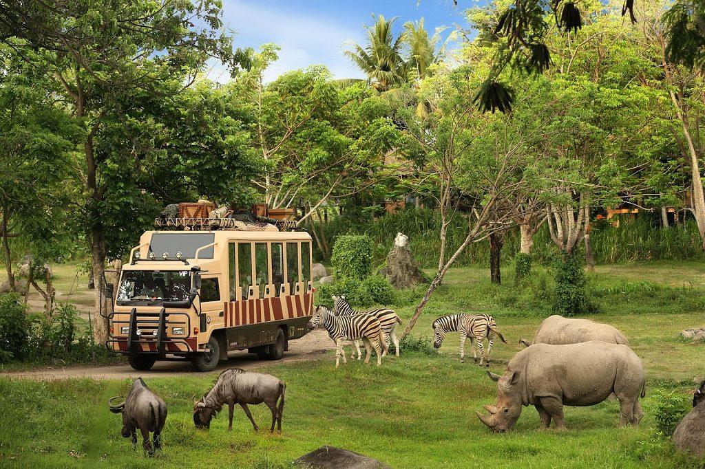 tiện ích Vinpearl Safari tại Vinpearl Cần Giờ