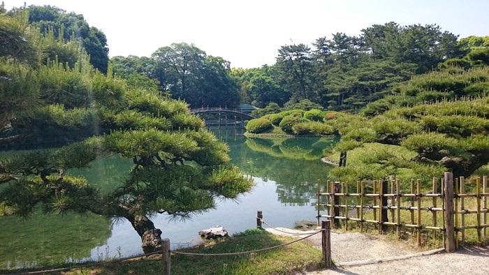 Vườn Nhật thực tế