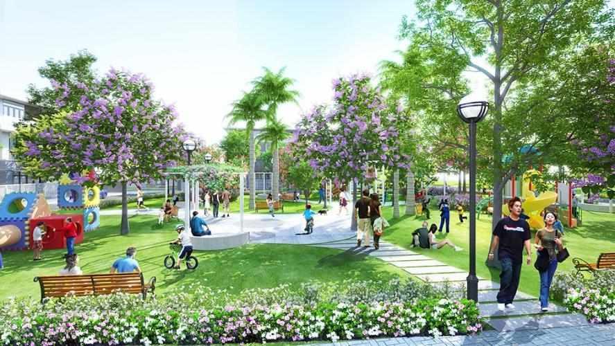 Dự Án Căn Hộ Terra Royal Quận 3: Giá Bán, Tiến Độ Cập Nhật Mới Nhất 2021